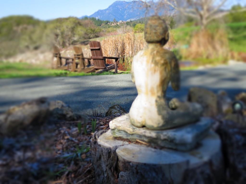 buddha-mayacamas-1024x768