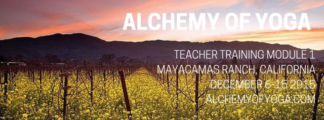 MAYACAMAS_cover