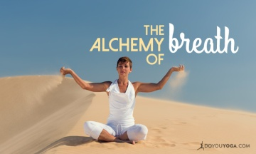 Dirgha-Pranayama-and-the-Alchemy-of-Breath