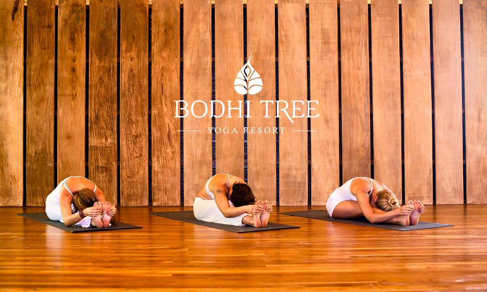 bhodi-tree-yoga-resort